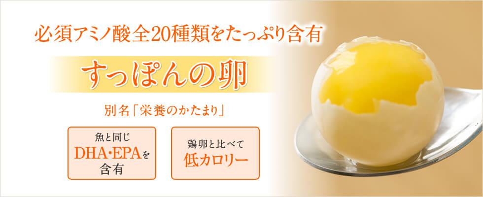 すっぽんの卵