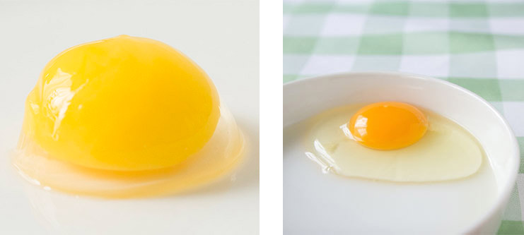 卵と鶏卵の白身